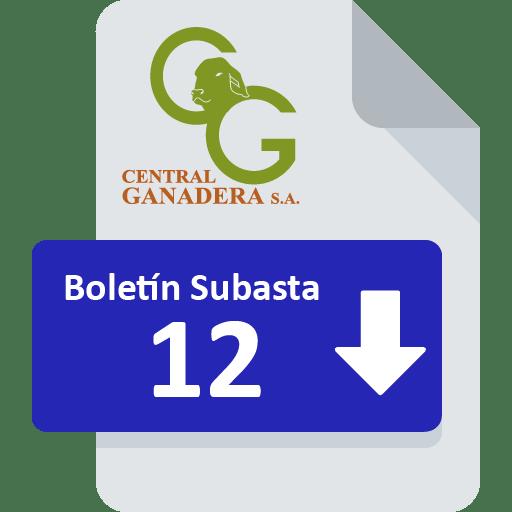 Resultados Subasta 12