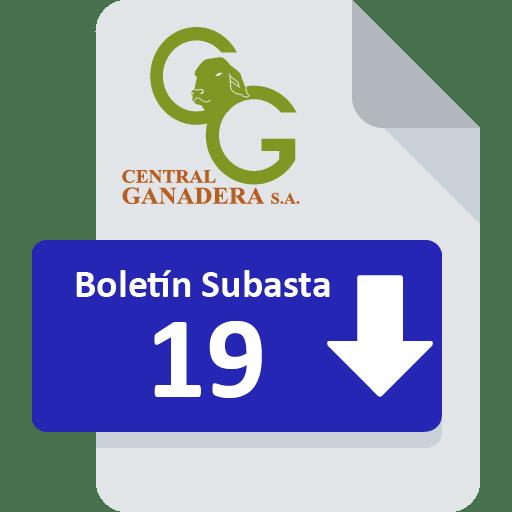 Resultados Subasta 19