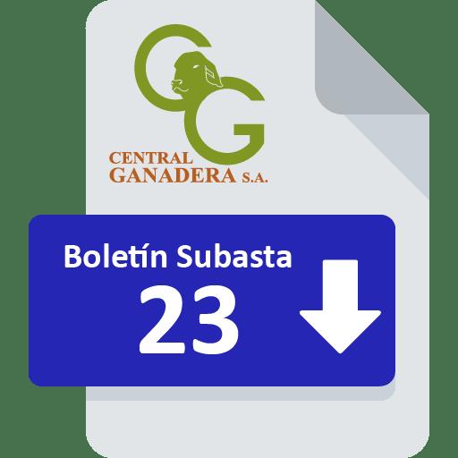 Resultados Subasta 23