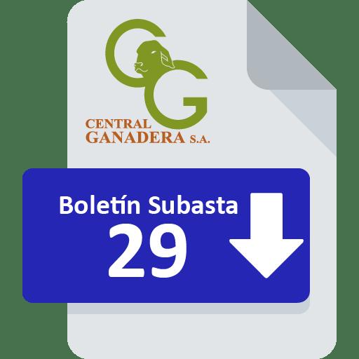 Resultados Subasta 29