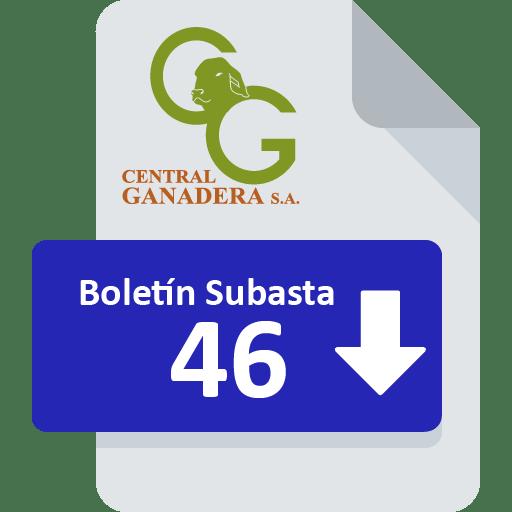 Resultados Subasta 46