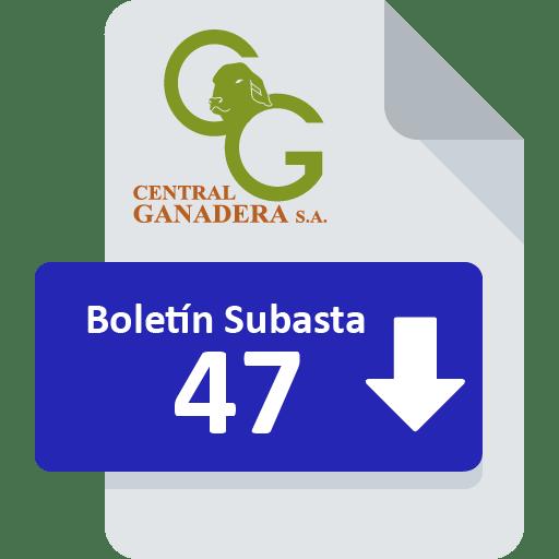 Resultados Subasta 47