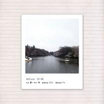 春の音連れ [ 8 / 22 ]
