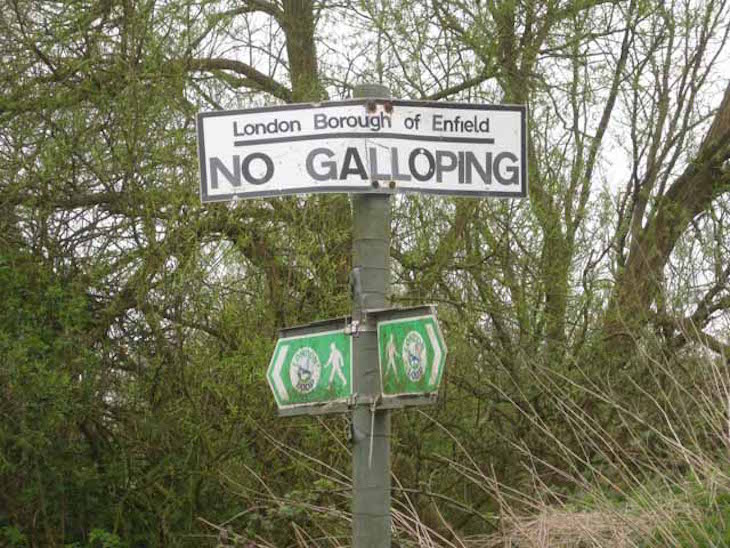 No Galloping