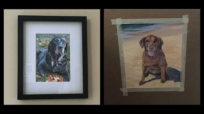 Remember your pet in style - with a pastel portrait