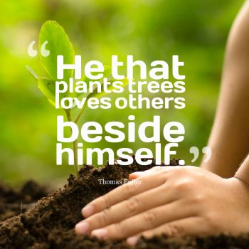 He that plants trees loves others beside himself.