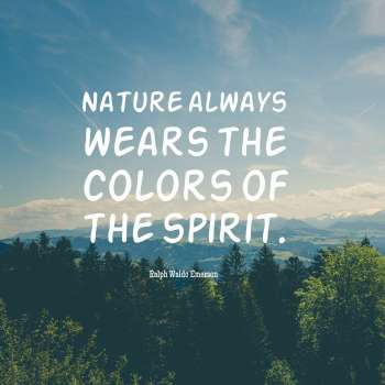 Nature always wears the colors of the spirit.