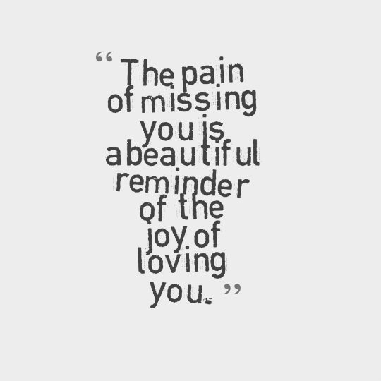 The pain of missing you is a beautiful reminder of the joy of loving you.