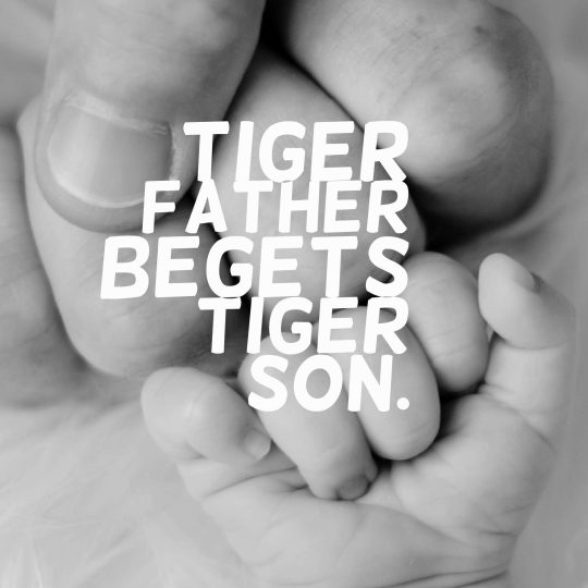 Tiger father begets tiger son.