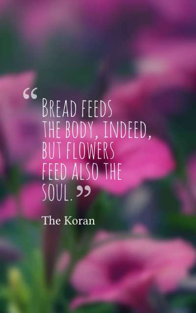 Bread feeds the body, indeed, but flowers feed also the soul.