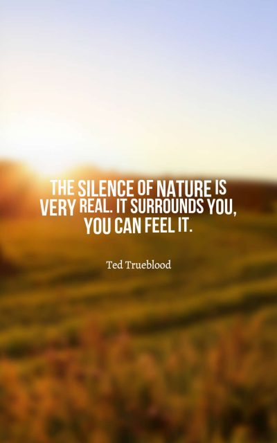 The silence of nature is very real. It surrounds you, you can feel it.