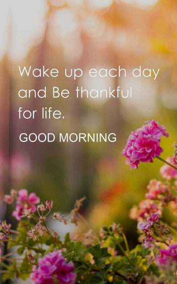 Wake up each day and Be thankful for life