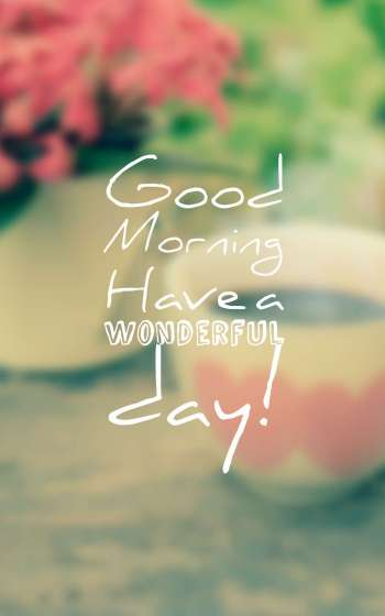 good morning have a wonderful day