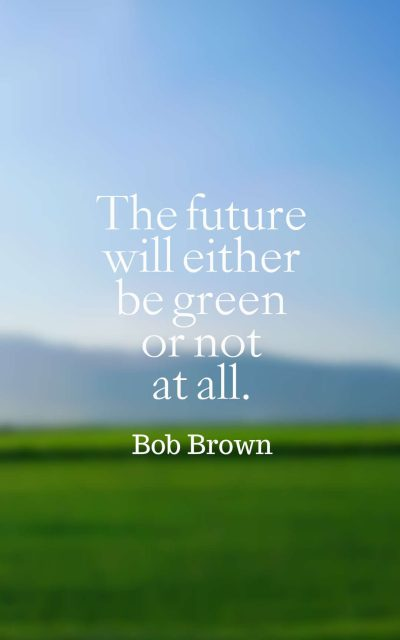 The future will either be green or not at all.