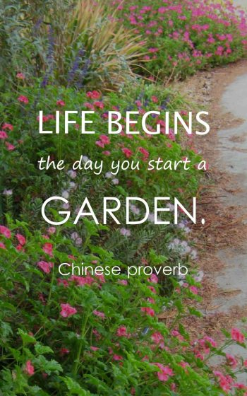 Garden Quotes | Top 50 Gardening Quotes And Sayings With Images