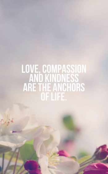 Love, compassion and kindness are the anchors of life.