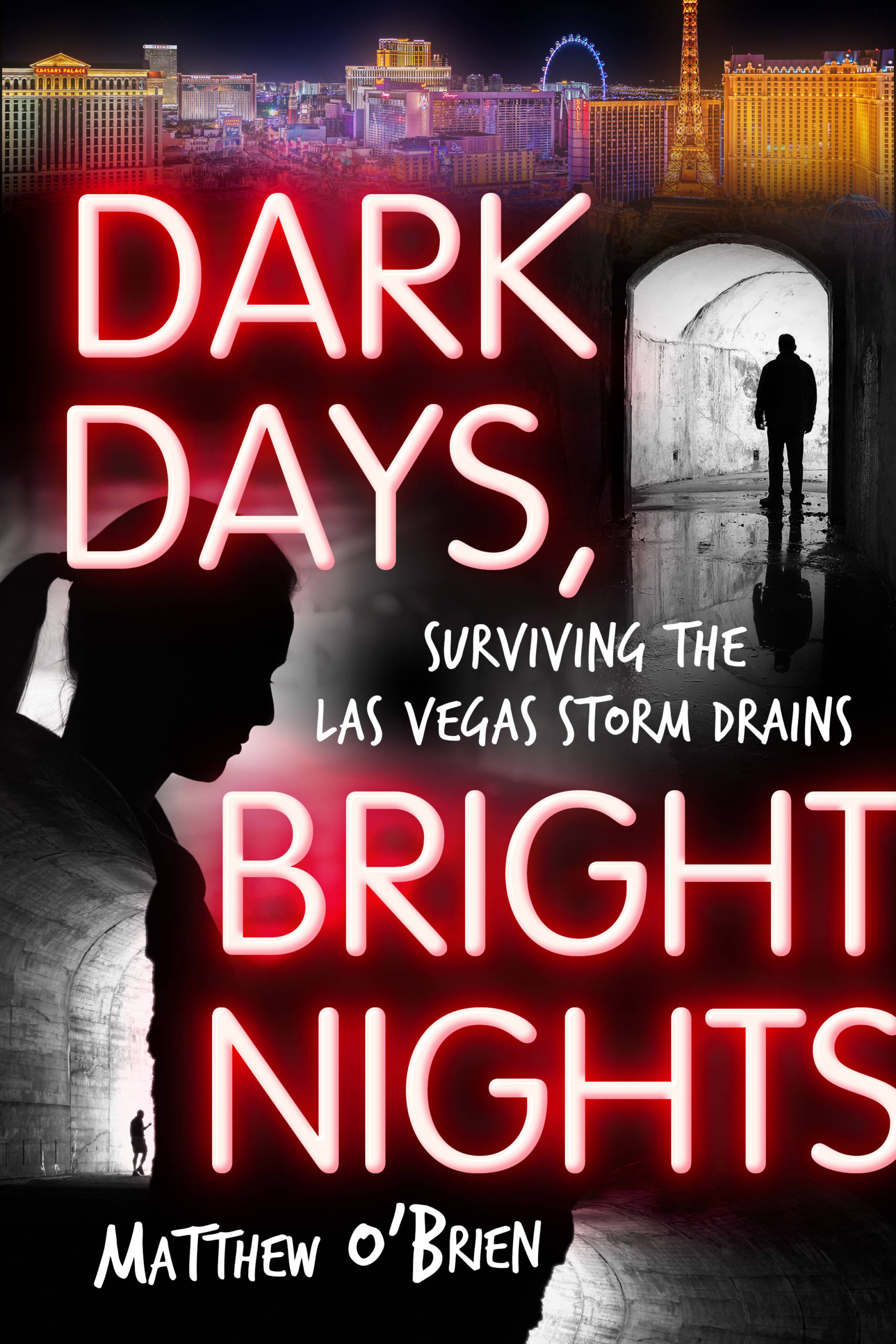 Dark Days, Bright Nights E-Book
