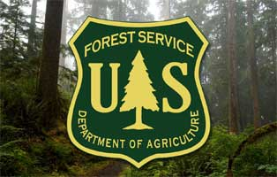 us forest service logo