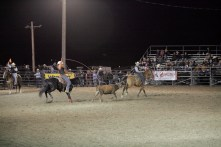 CWC_Rodeo_14-223