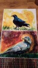 Yvonne Gilfillan - Birds Painting