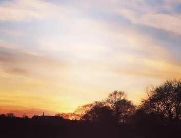 Sharmili Lama - Sunset Image