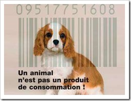 animal code barre