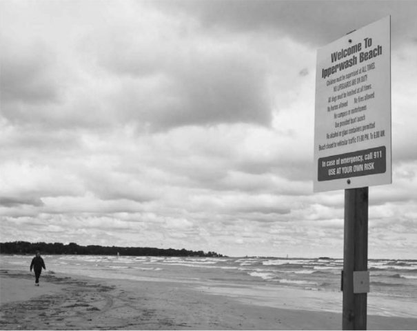 Changes could be coming to West lpperwash Beach. Officials representing the West lpperwash Homeowners' Association and the Kettle and Stony Point First Nation recently present a proposal to Lambton Shores council to tackle some issues plaguing the beach, including garbage, alcohol use, and animals and vehicles on the beach.