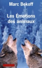 mbekoff-es-emotions-des-animaux