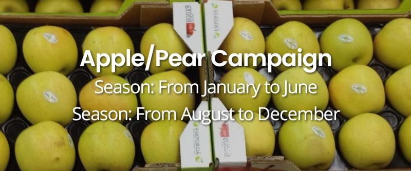 apple-pear-campaign HOME