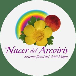 Centro-alma-terapia-floral-Medicina Alternativa