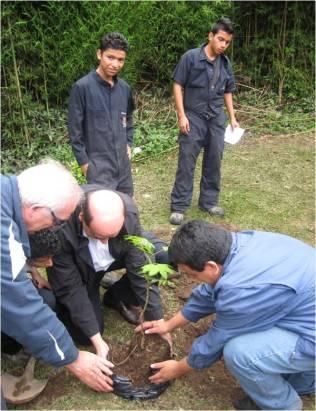 Hogar Calasanz: Plantando un árbol