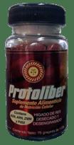 protoliber
