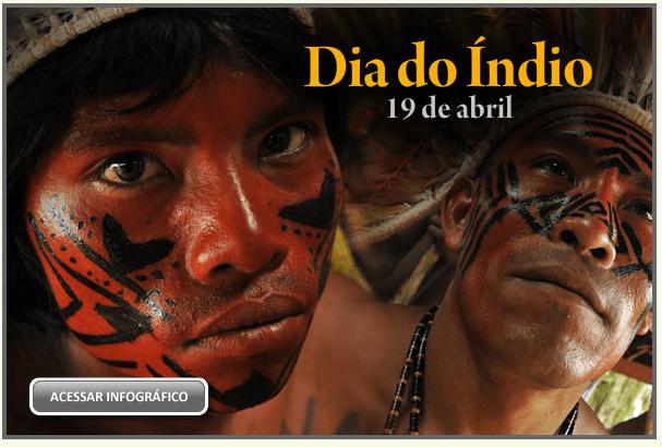 Infográfico Dia do índio