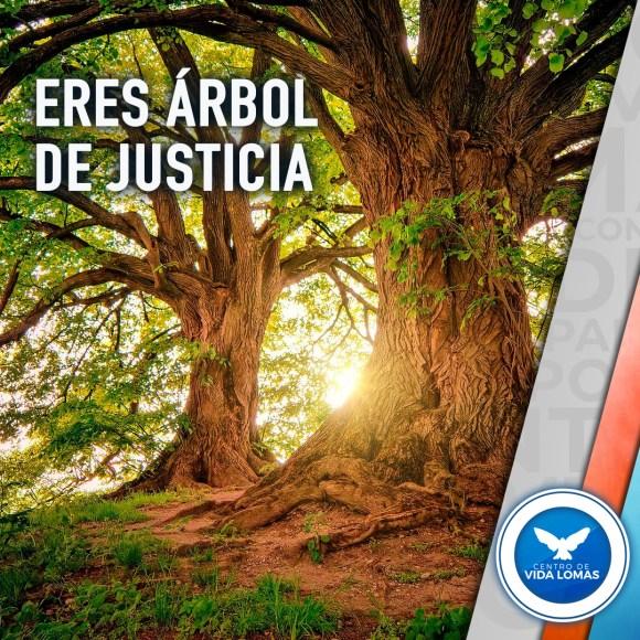 Eres árbol de justicia