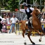 LOS ROBLES: EL MEJOR CENTRO HIPICO EN LA COSTA BLANCA