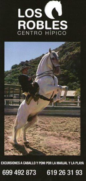 montar-caballos-en-Gandia