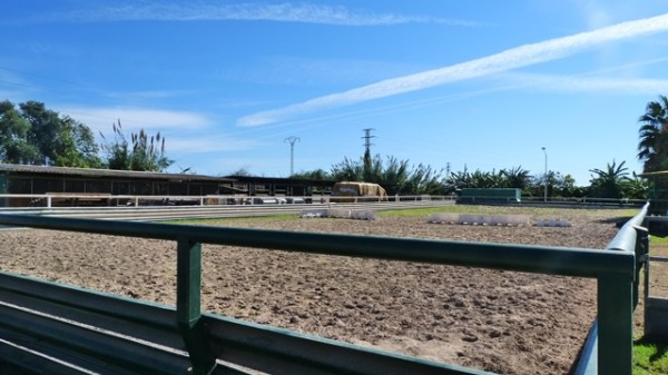 Outdoor riding school in Gandia