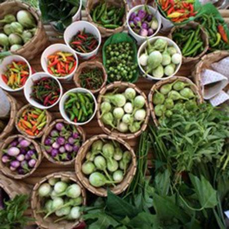 Diferentes variedades de verduras y hortalizas en unos cestos.