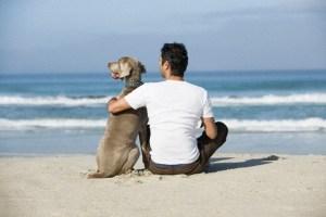 Avere un animale in casa f abene all'equilibrio psicologico