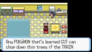 Lista de Máquinas Ocultas de Pokémon Blanco y Negro
