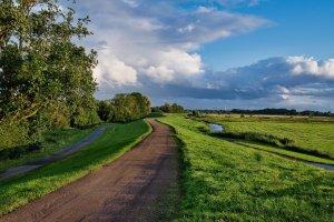 path, grass, dike-6514885.jpg