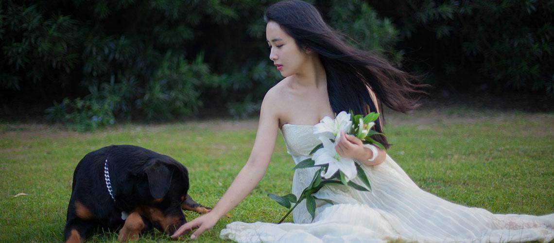 Cani-al-matrimonio