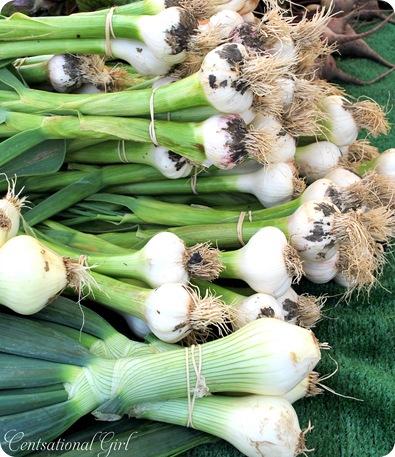 cg more onions