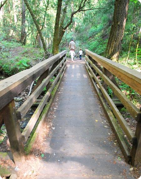 walk over bridge