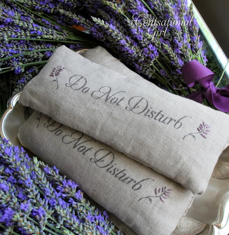 Diy Lavender Eye Pillows And A Giveaway Centsational Style