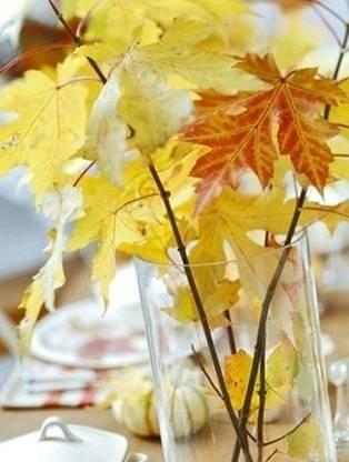 fall leaves in vase