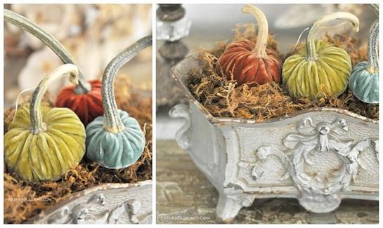 heather velvet pumpkins