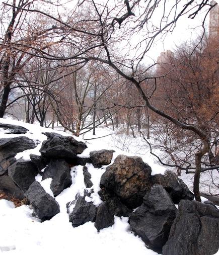 ny central park rocks