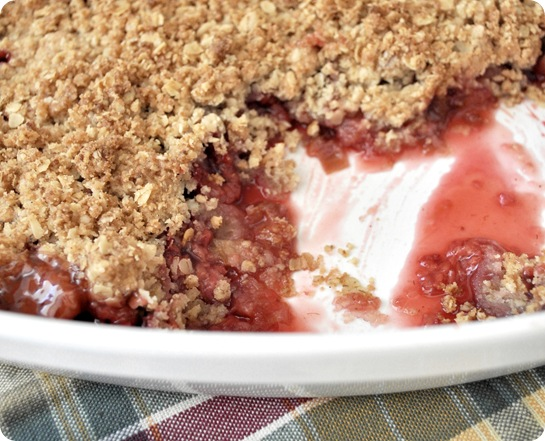rhubarb raspberry crumble up close-1