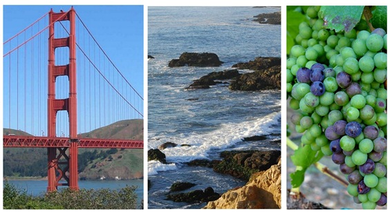 city coast wine country